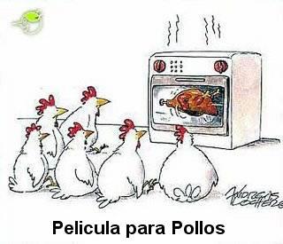 pelicula-para-pollos1